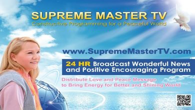 Photo of Supreme Master Tv New Frequency 2020