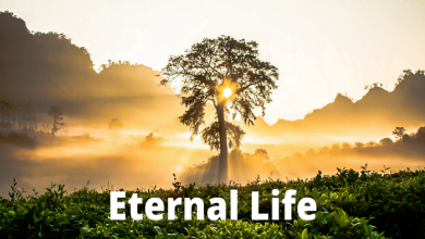 Photo of Eternal Life New Frequency 2020
